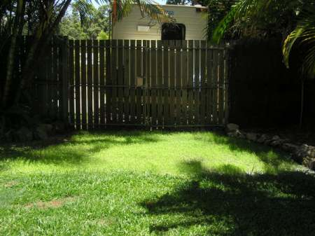 A Back Yard After Hydromulch