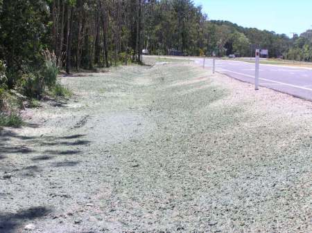 Roadside Hydromulching - Before