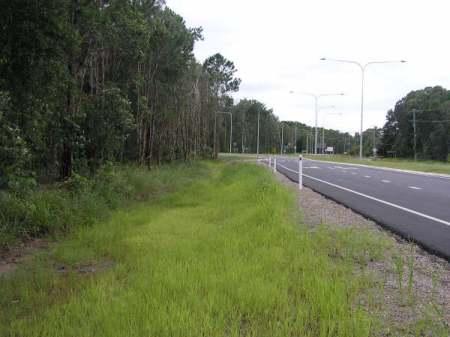 Roadside Hydromulching - After